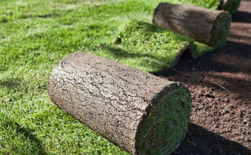 How to Prepare the Ground before Laying Turf – Johannesburg